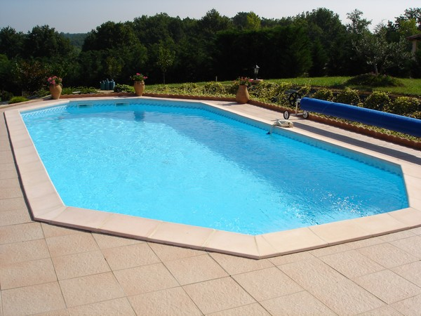 Construction piscines forme libre for Constructeur de piscine toulouse