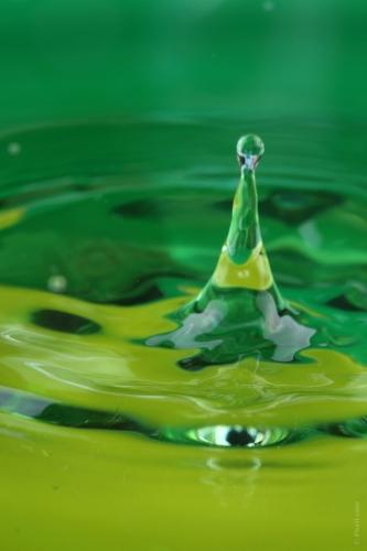 L'eau de ma piscine est verte !