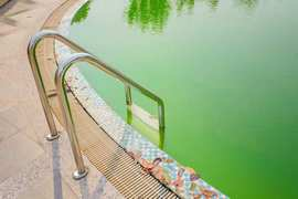 Comment rattraper l'eau verte de sa piscine ?
